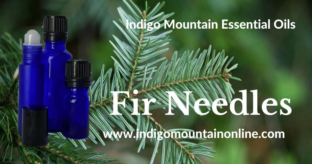 Fir Needles Essential Oil