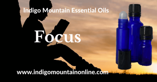 Focus Essential Oil Synergy