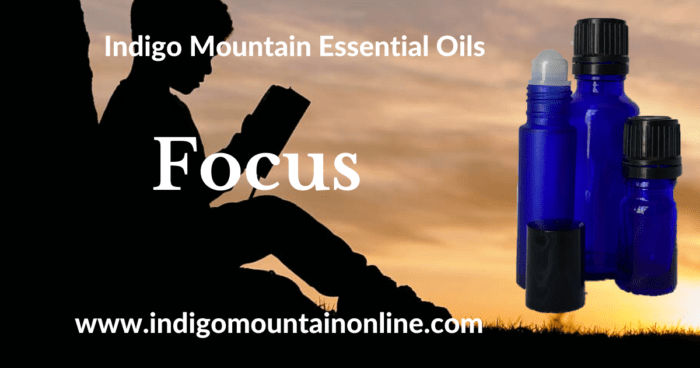 Focus Essential Oil Synergy