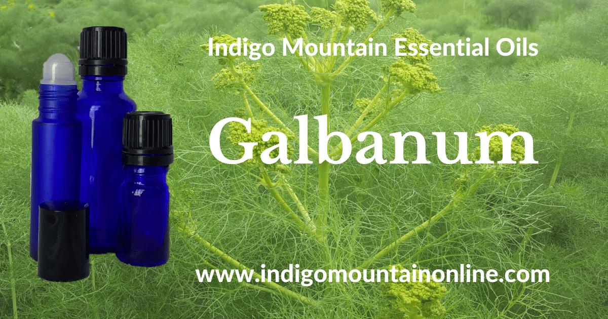 Galbanum Essential oil