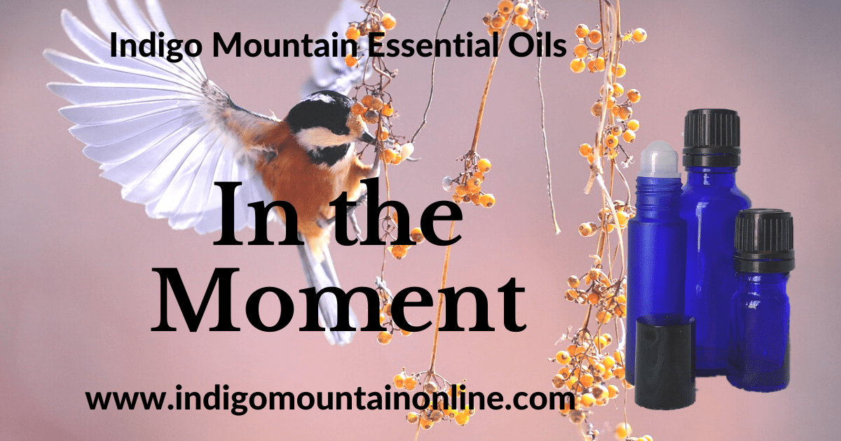 In the Moment Essential Oil Synergy