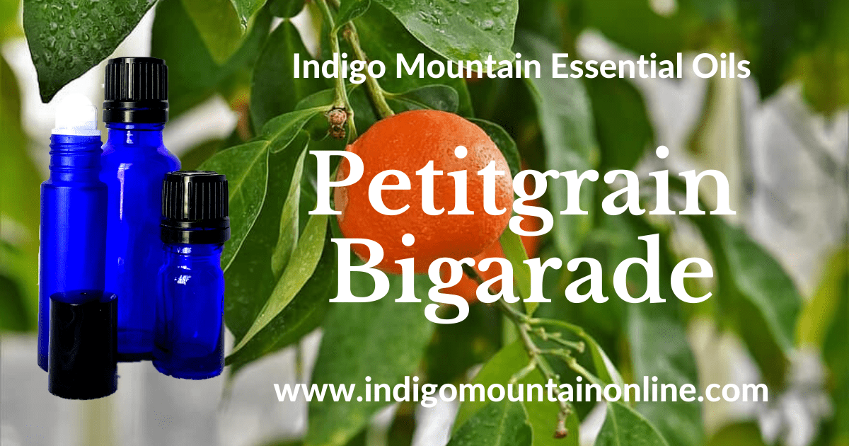 Petitgrain Bigarade Essential Oil