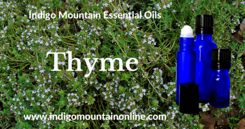 Thyme Essential Oil